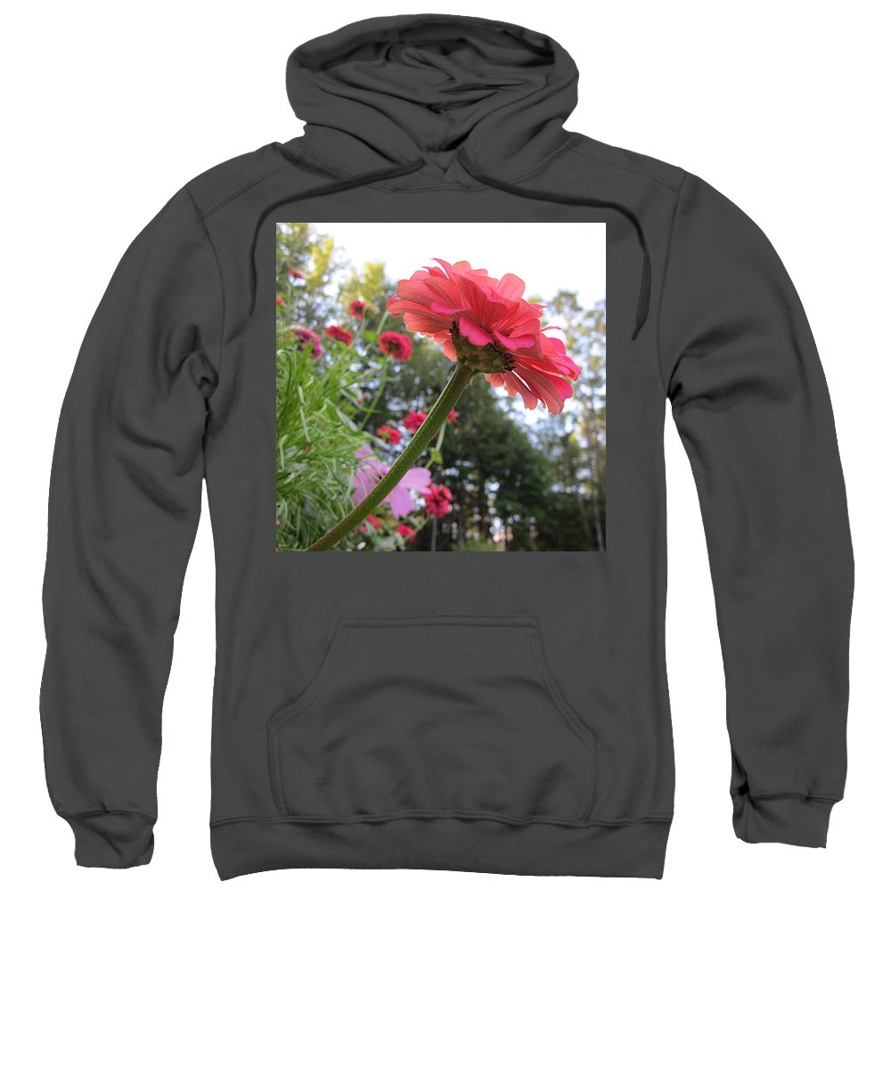 Zinnia Sweatshirt featuring the photograph Zinnia Side View by MTBobbins Photography