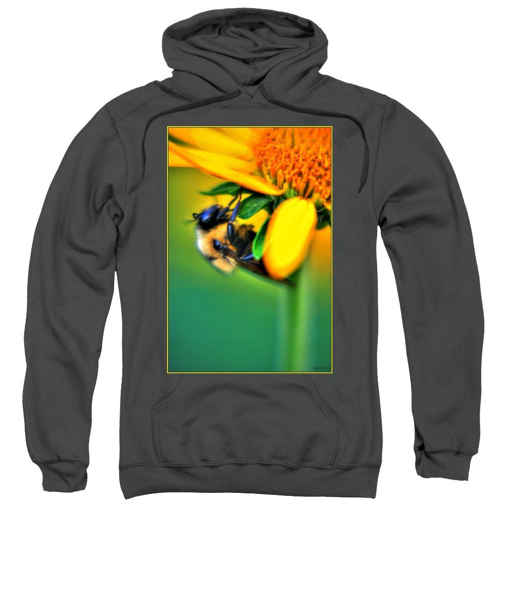 Sweatshirt featuring the photograph 001 Sleeping Bee by Michael Frank Jr