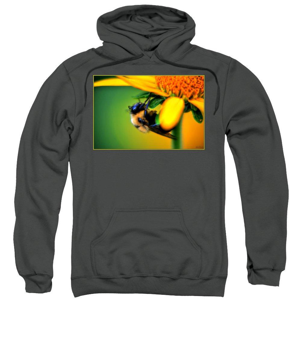 Sweatshirt featuring the photograph 002 Sleeping Bee Series by Michael Frank Jr