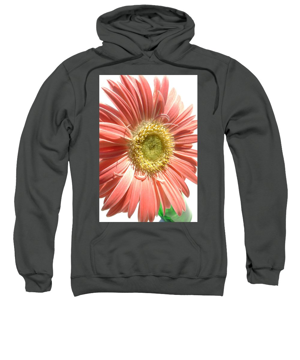 Gerbera Photographs Photographs Photographs Sweatshirt featuring the photograph 0620a-003 by Kimberlie Gerner