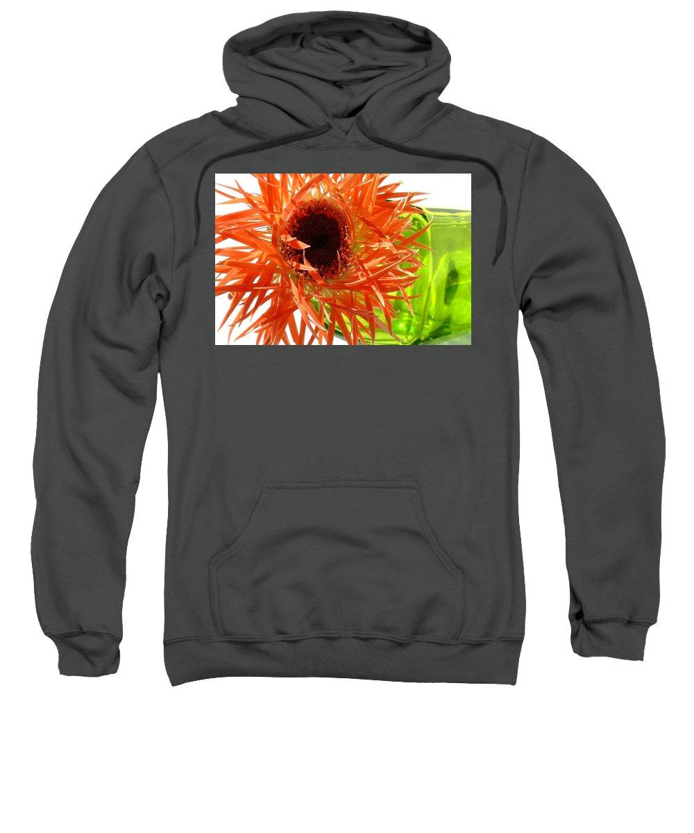 Gerbera Photographs Sweatshirt featuring the photograph 0690c-013 by Kimberlie Gerner