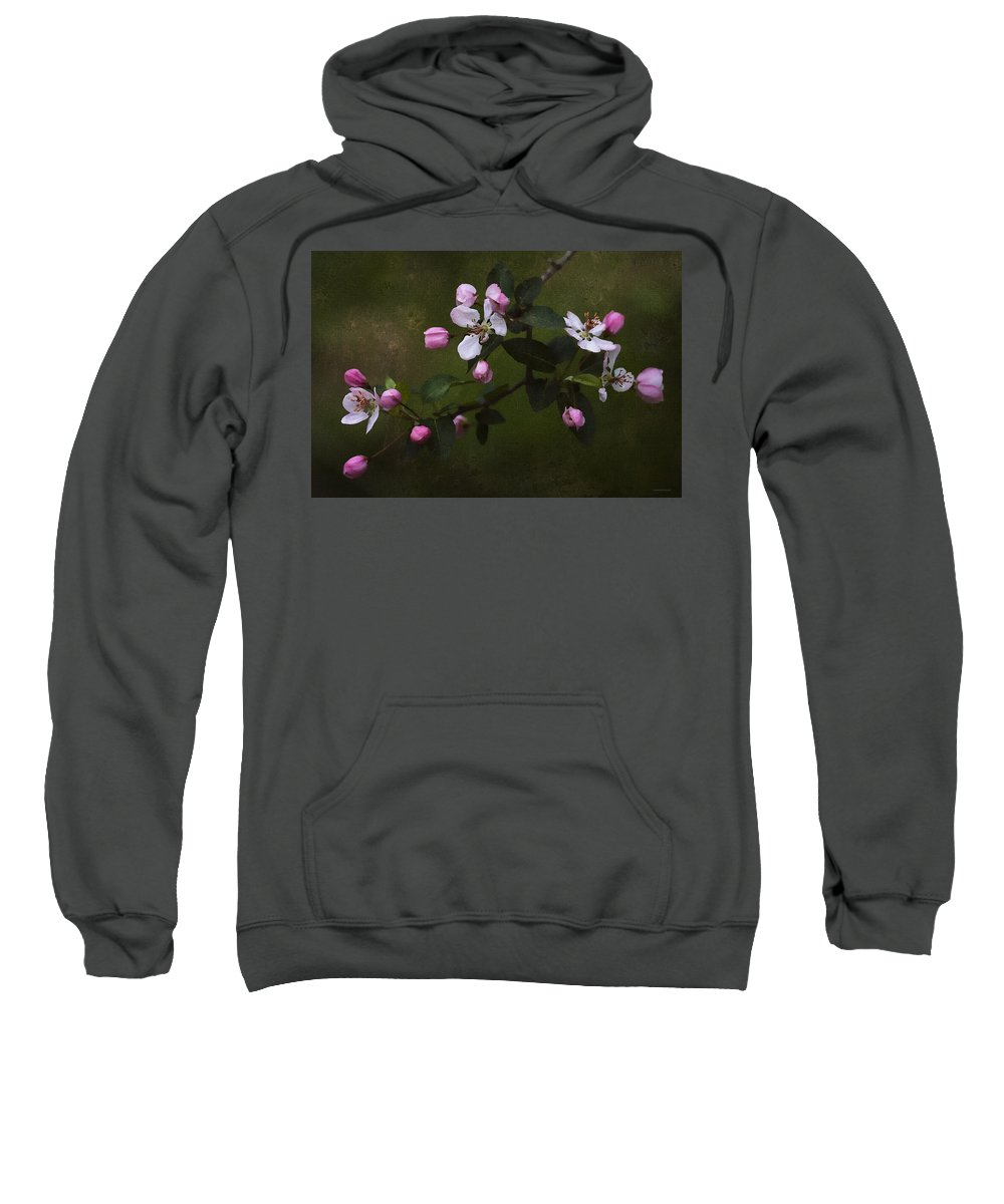 Floral Sweatshirt featuring the photograph Apple Blossom Time by Ron Jones