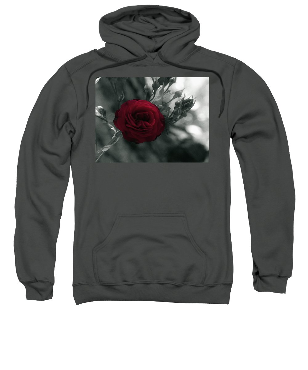 Digitally Hand Colored Sweatshirt featuring the photograph Red Rose Beauty by Linda Dunn