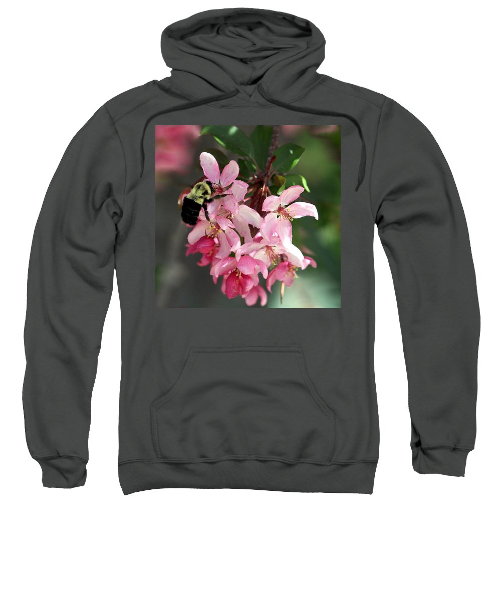 Cherry Blossom Sweatshirt featuring the photograph Buzzing Beauty by Elizabeth Winter