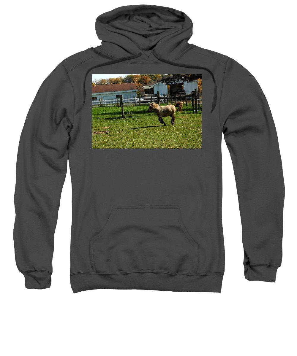 Usa Sweatshirt featuring the photograph Lets Ride by LeeAnn McLaneGoetz McLaneGoetzStudioLLCcom