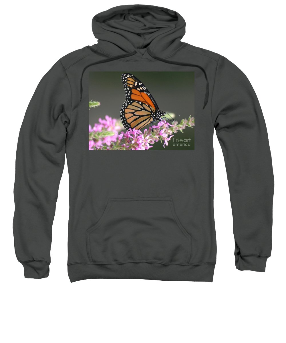 Buttergly Sweatshirt featuring the photograph On The Edge by Living Color Photography Lorraine Lynch