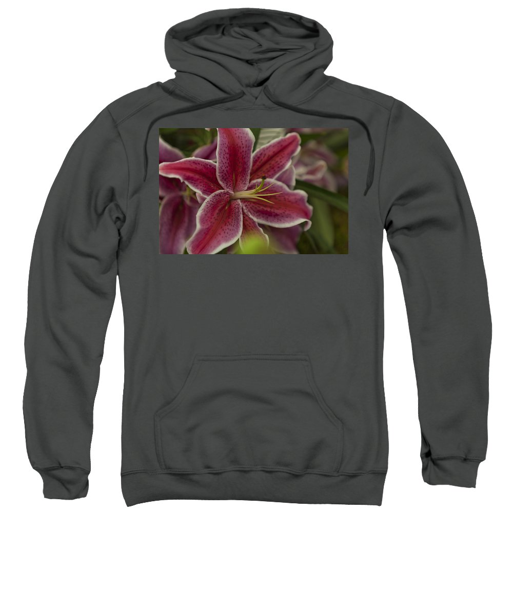 Rhs Sweatshirt featuring the photograph Pink-lily by Maj Seda