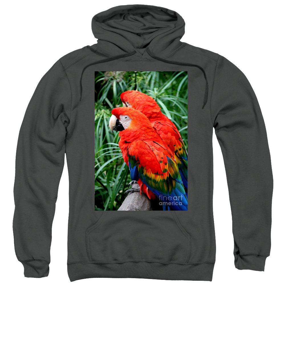 America Sweatshirt featuring the photograph Scalet Macaw by Henrik Lehnerer