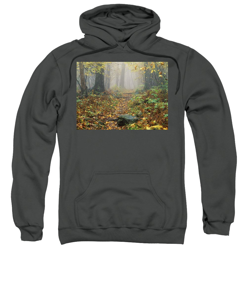 Autumn Colors Sweatshirt featuring the photograph Shenandoah National Park In Virginia by Bilderbuch