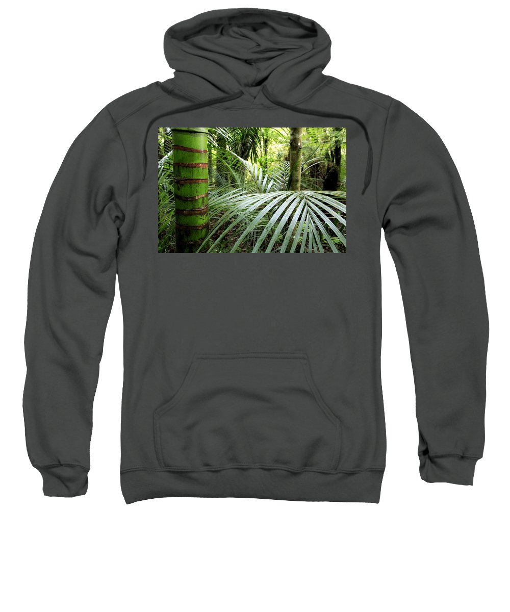 Environment Sweatshirt featuring the photograph Tropical Jungle by Les Cunliffe
