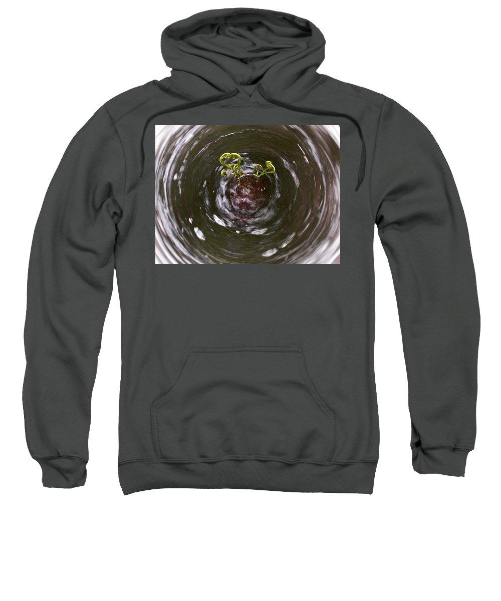 Liesijoki Sweatshirt featuring the photograph Ferns In A Stream by Jouko Lehto