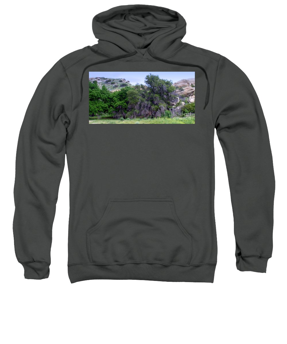 Santa Sweatshirt featuring the photograph Santa Susana Mountains by Henrik Lehnerer