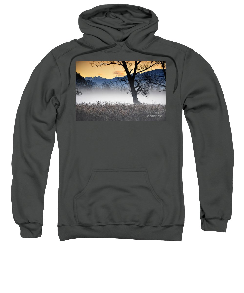 Trees Sweatshirt featuring the photograph Trees With Fog by Mats Silvan