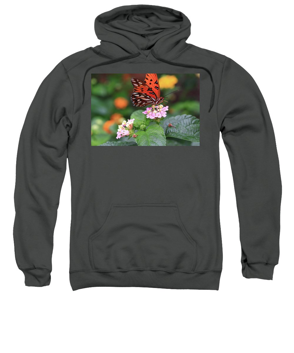 Butterfly Sweatshirt featuring the photograph Untitled by Rick Berk