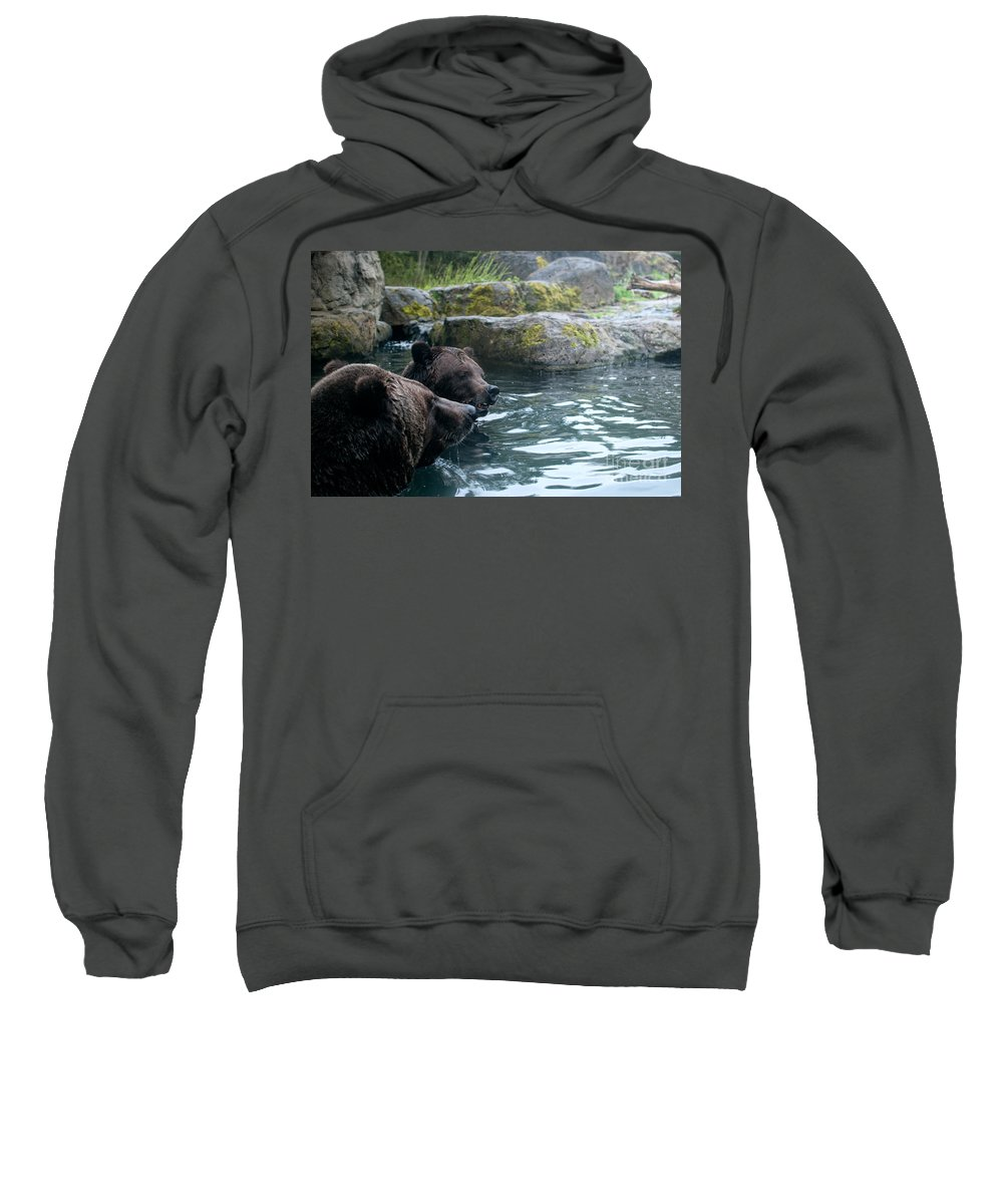 Animals Sweatshirt featuring the digital art Grizzly Bear Or Brown Bear by Carol Ailles