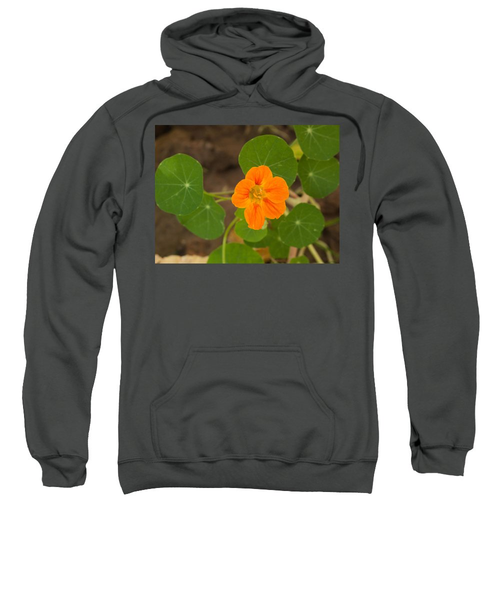 Flower Sweatshirt featuring the photograph A Beautiful Orange Trumpet Shaped Flower With Green Leaves by Ashish Agarwal