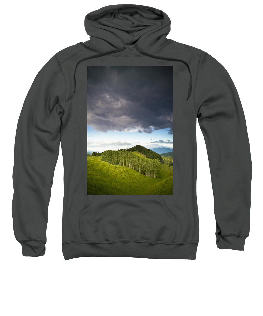 Color Image Sweatshirt featuring the photograph A Lush Green Landscape With Grassy by David DuChemin