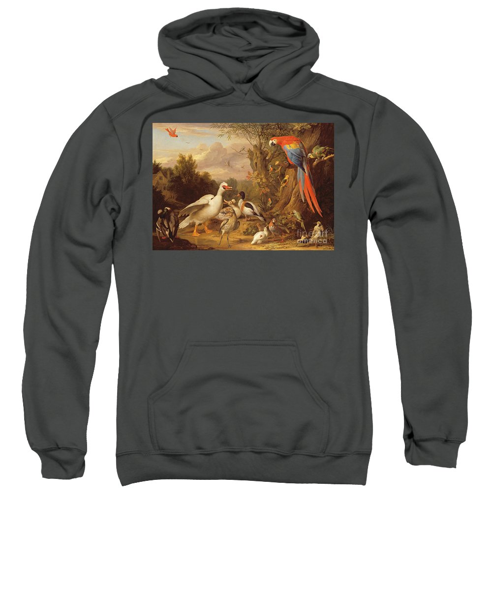 Xyc206189 Sweatshirt featuring the photograph A Macaw - Ducks - Parrots And Other Birds In A Landscape by Jakob Bogdani