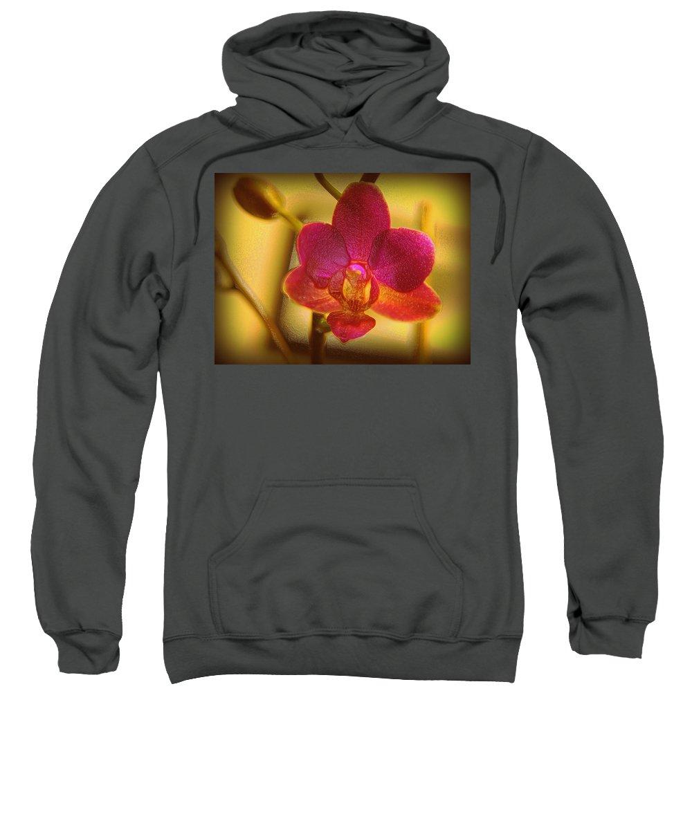 Flower Sweatshirt featuring the digital art A Nice Center Piece by Teri Schuster