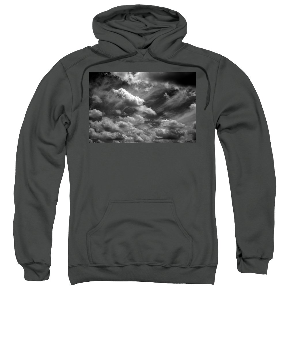 A Whales Tale Sweatshirt featuring the photograph A Whales Tale by Ed Smith