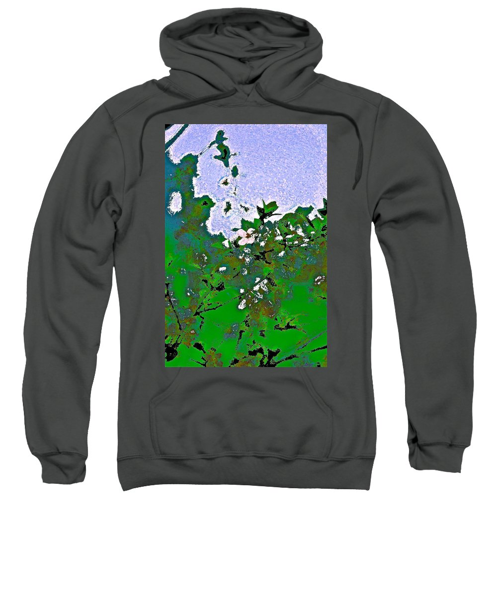 Abstract Sweatshirt featuring the photograph Abstract 218 by Pamela Cooper