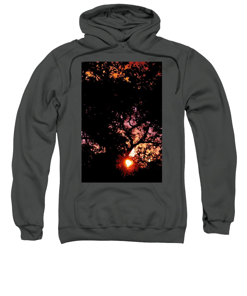 Abstract Sweatshirt featuring the photograph Abstract 223 by Pamela Cooper