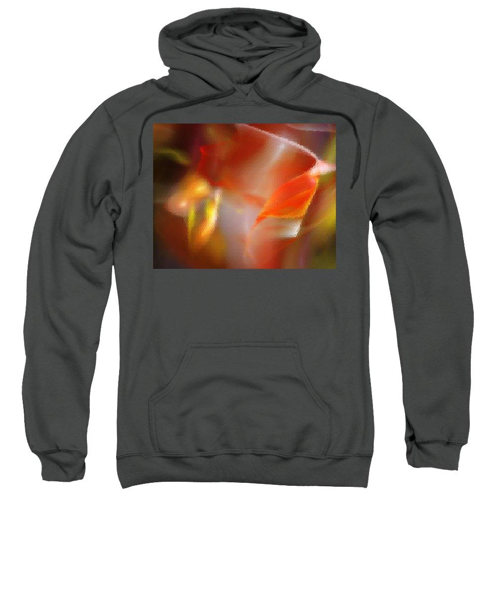 Fine Art.modern Art Sweatshirt featuring the digital art Abstract Under Glass by David Lane