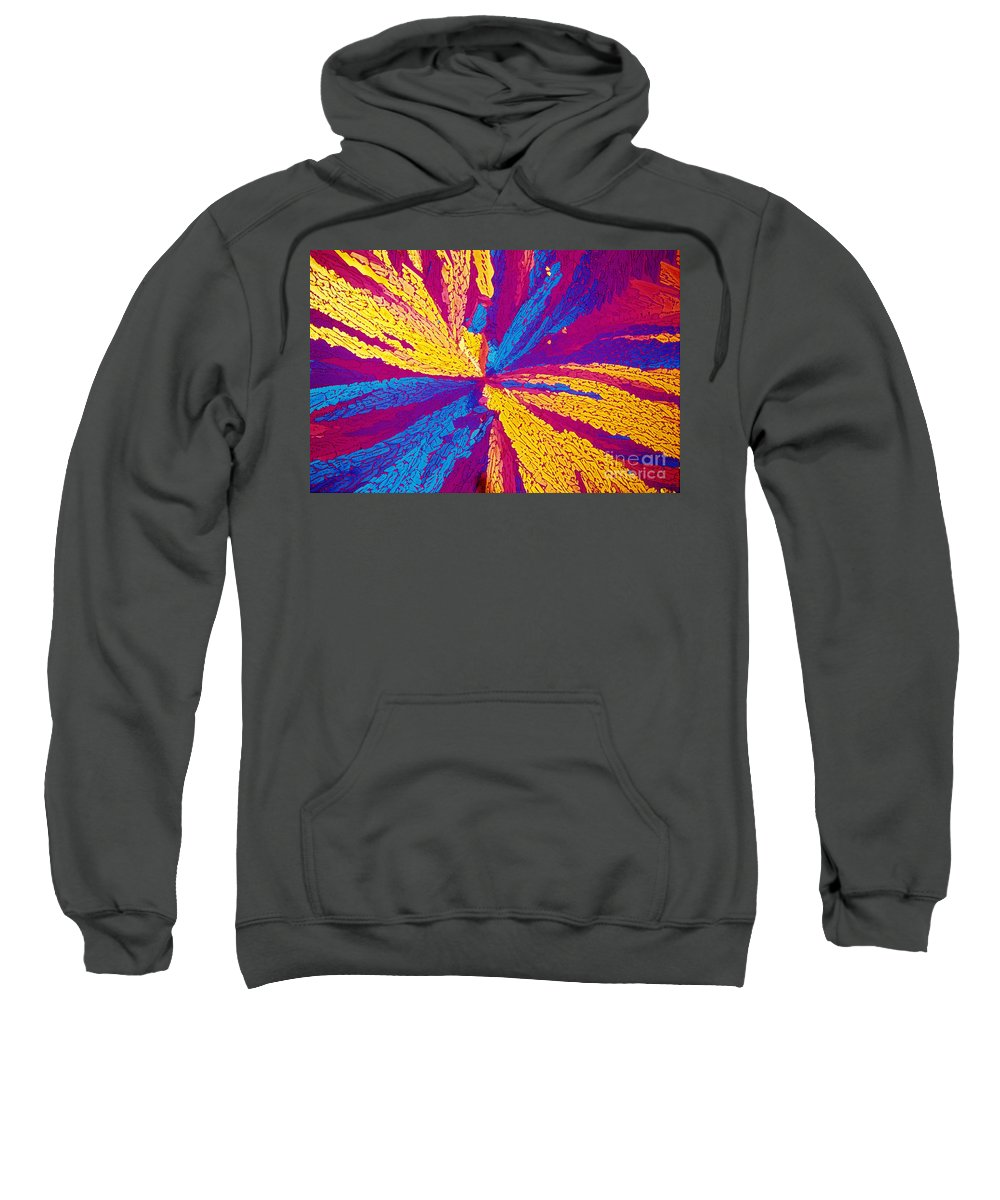 Polarized Light Micrograph Sweatshirt featuring the photograph Acetylcholine by Michael W. Davidson