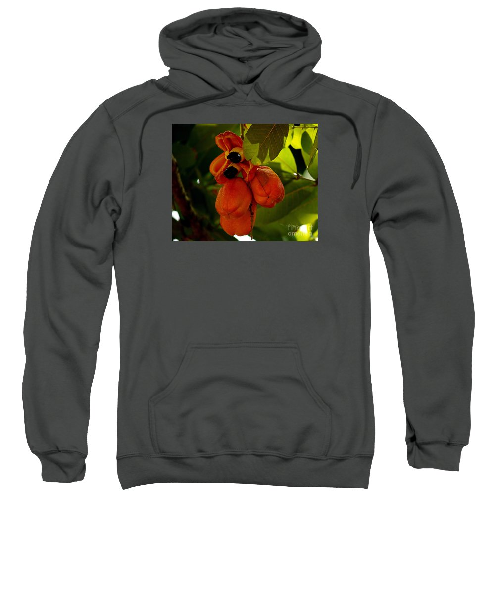 Fine Art Photography Sweatshirt featuring the photograph Akee by Patricia Griffin Brett