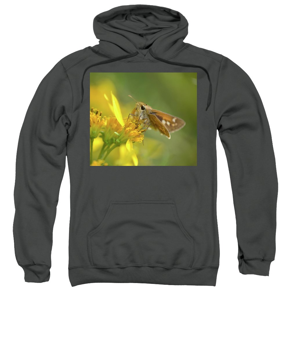 Skipper Sweatshirt featuring the photograph Alighted Skipper by JD Grimes