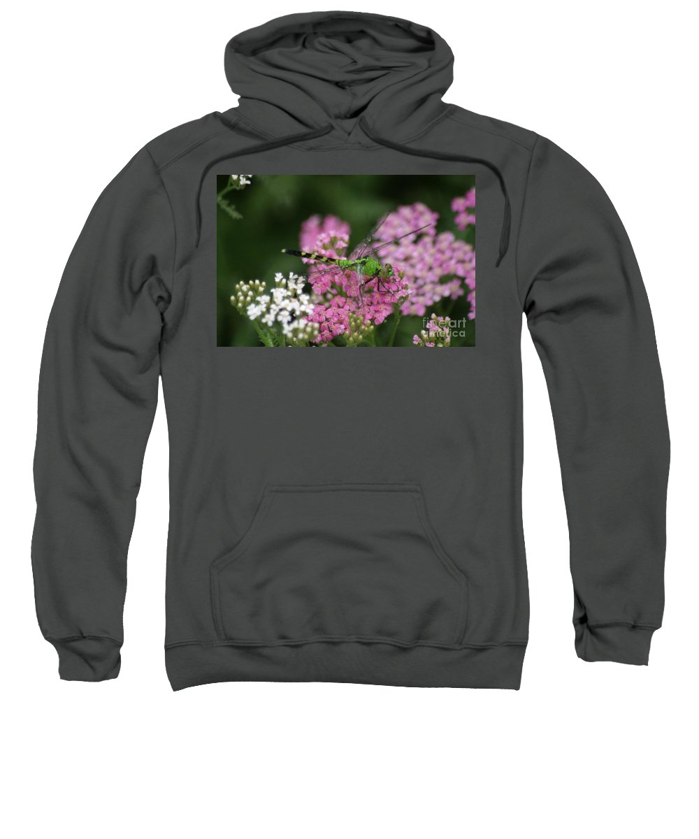Insects Sweatshirt featuring the photograph Always Stop To Smell The Flowers by Living Color Photography Lorraine Lynch