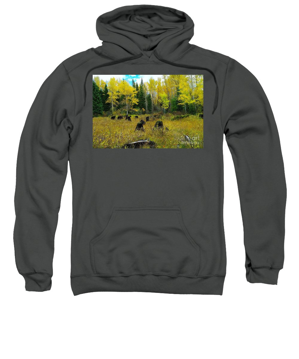 Trees Sweatshirt featuring the photograph An Old Clear Cut In Autumn by Jeff Swan