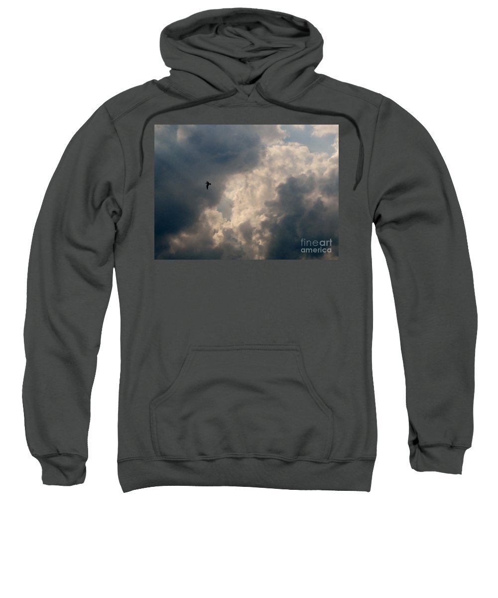 Angel Sweatshirt featuring the photograph Angel Flight by Art Dingo
