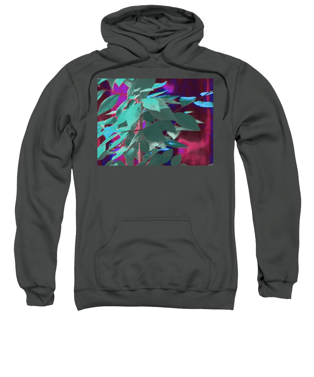 Abstract Sweatshirt featuring the photograph Another Elm by Lenore Senior