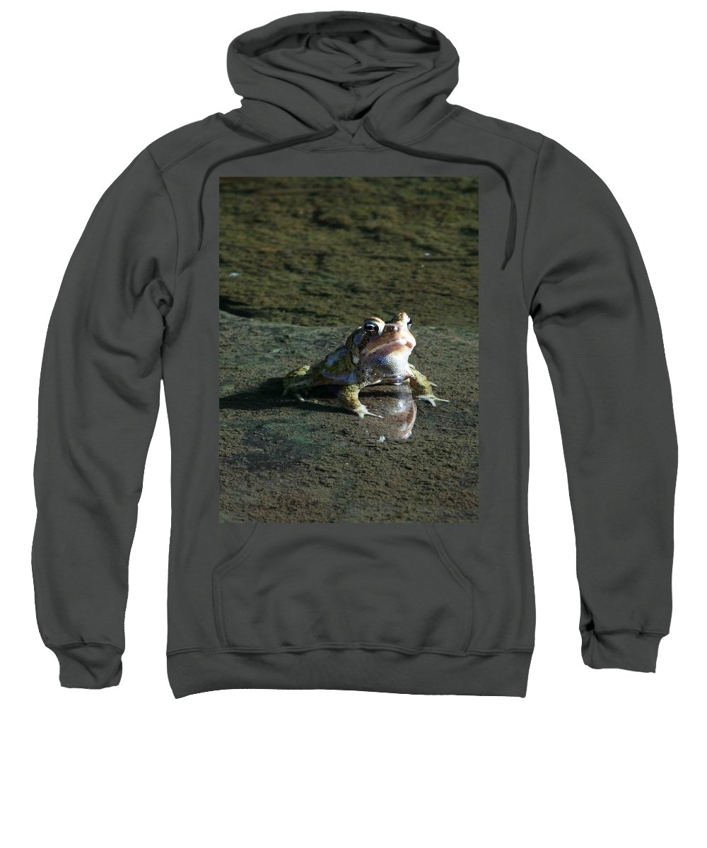 Frog Sweatshirt featuring the photograph Attitude by Dennis Comins
