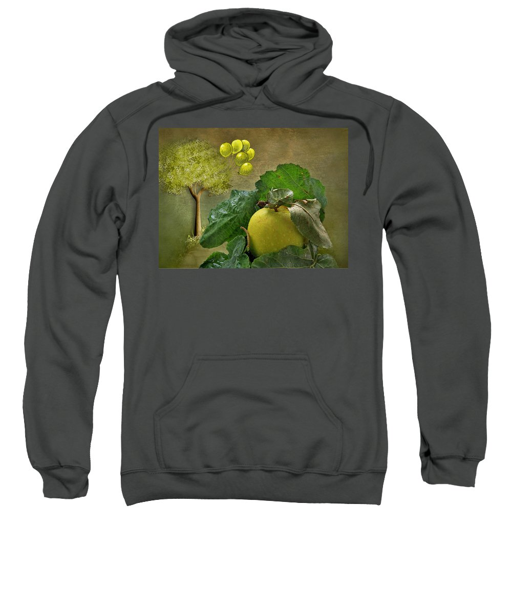 Apple.apples Sweatshirt featuring the photograph Autumn Apple by Manfred Lutzius
