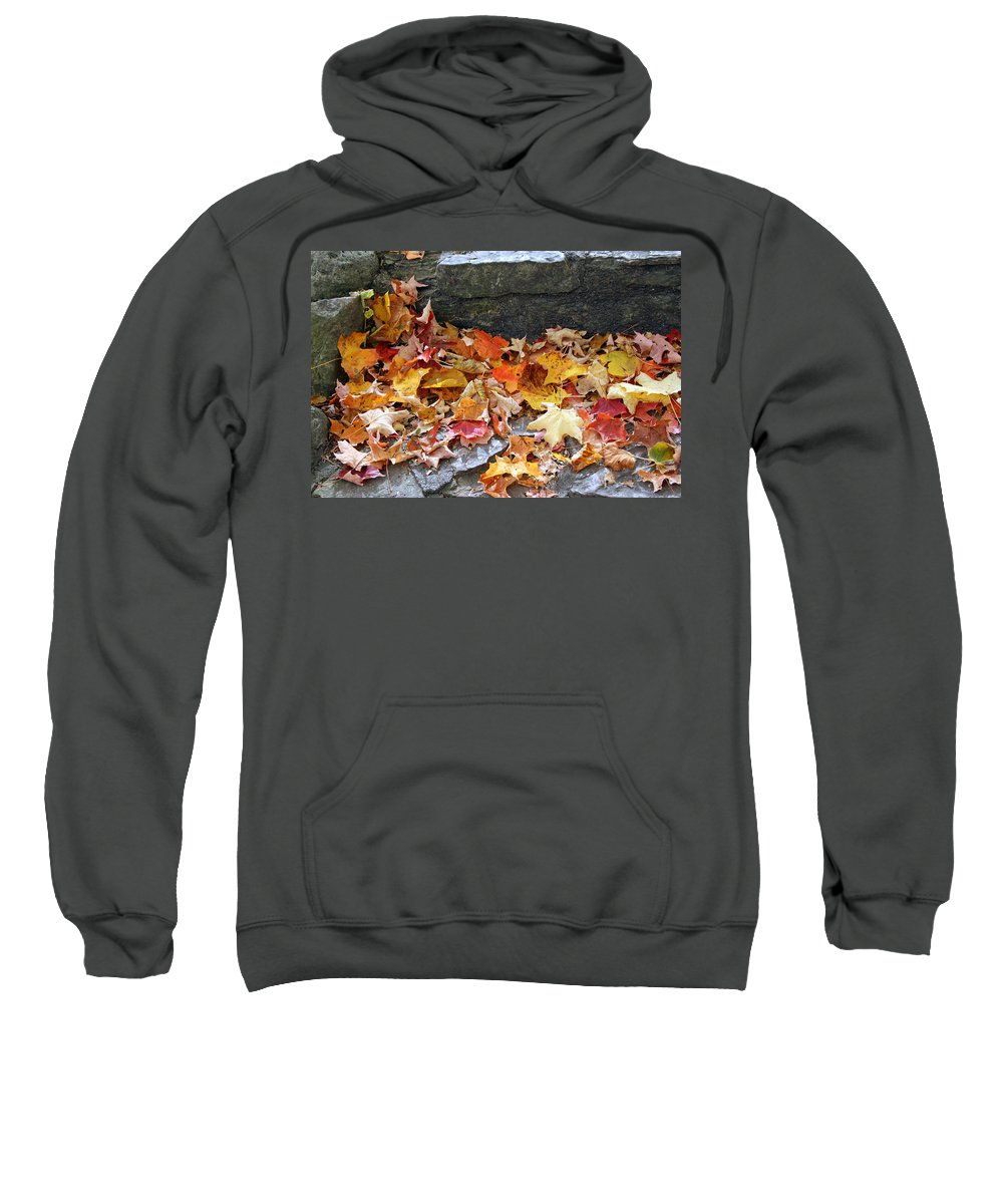 Nature Sweatshirt featuring the photograph Autumn Leaves by Kay Novy