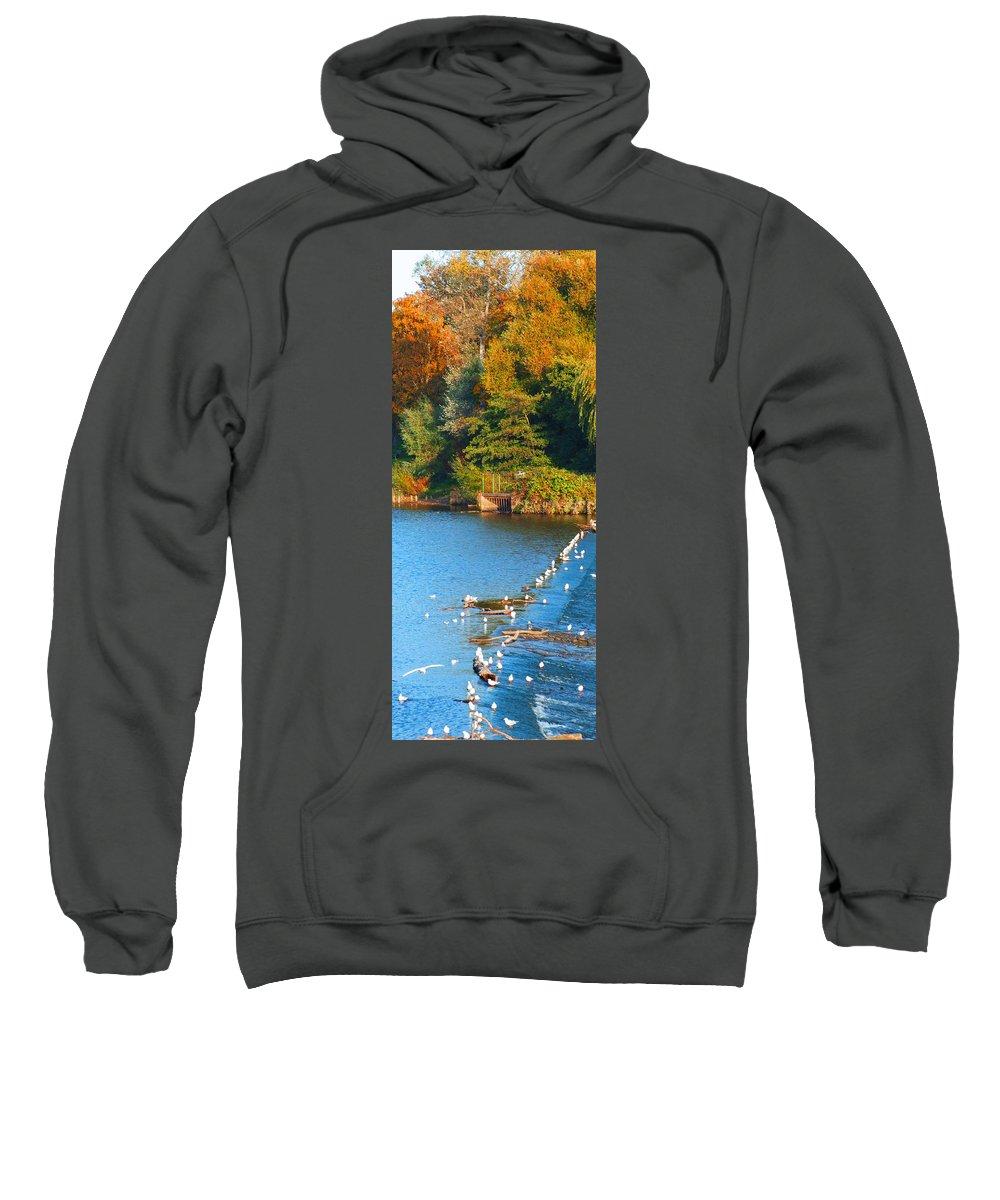 Autume Season Sweatshirt featuring the photograph Autumn Season by Bai Qing Lyon