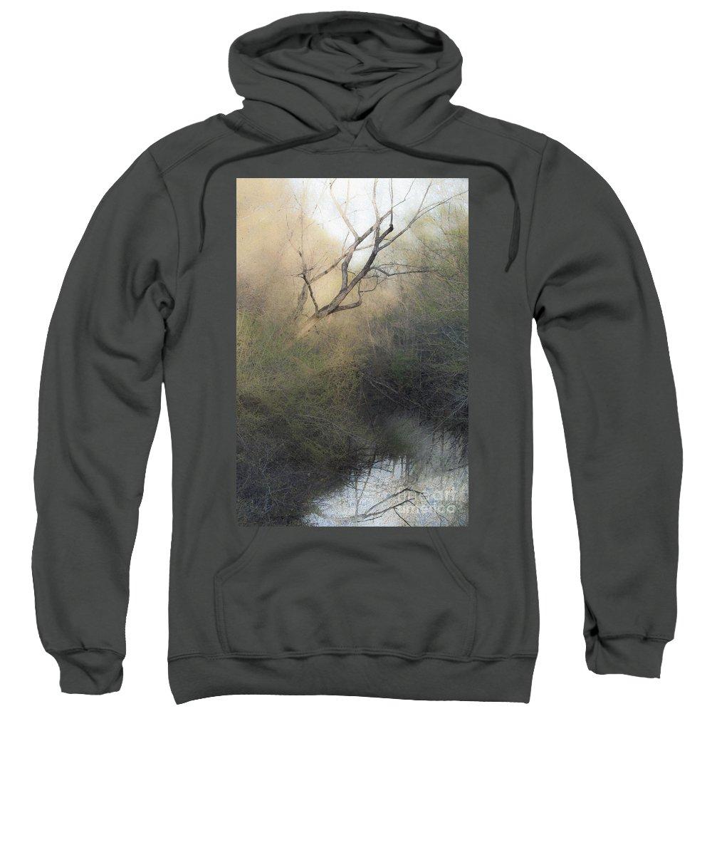 Tree Sweatshirt featuring the mixed media Barren Beauty by Kim Henderson