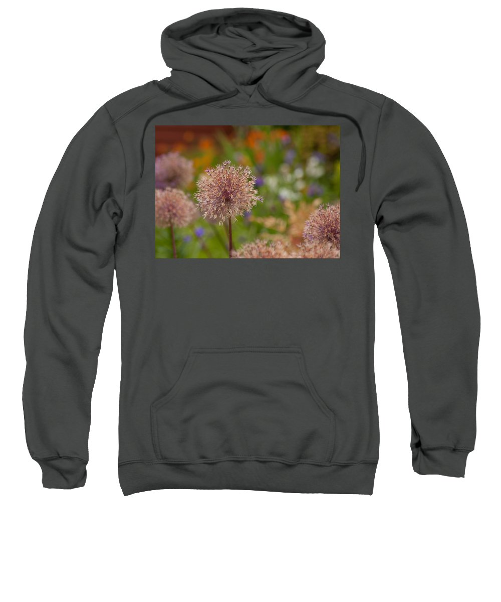 Flower Sweatshirt featuring the photograph Beauty Clusters by Mike Reid