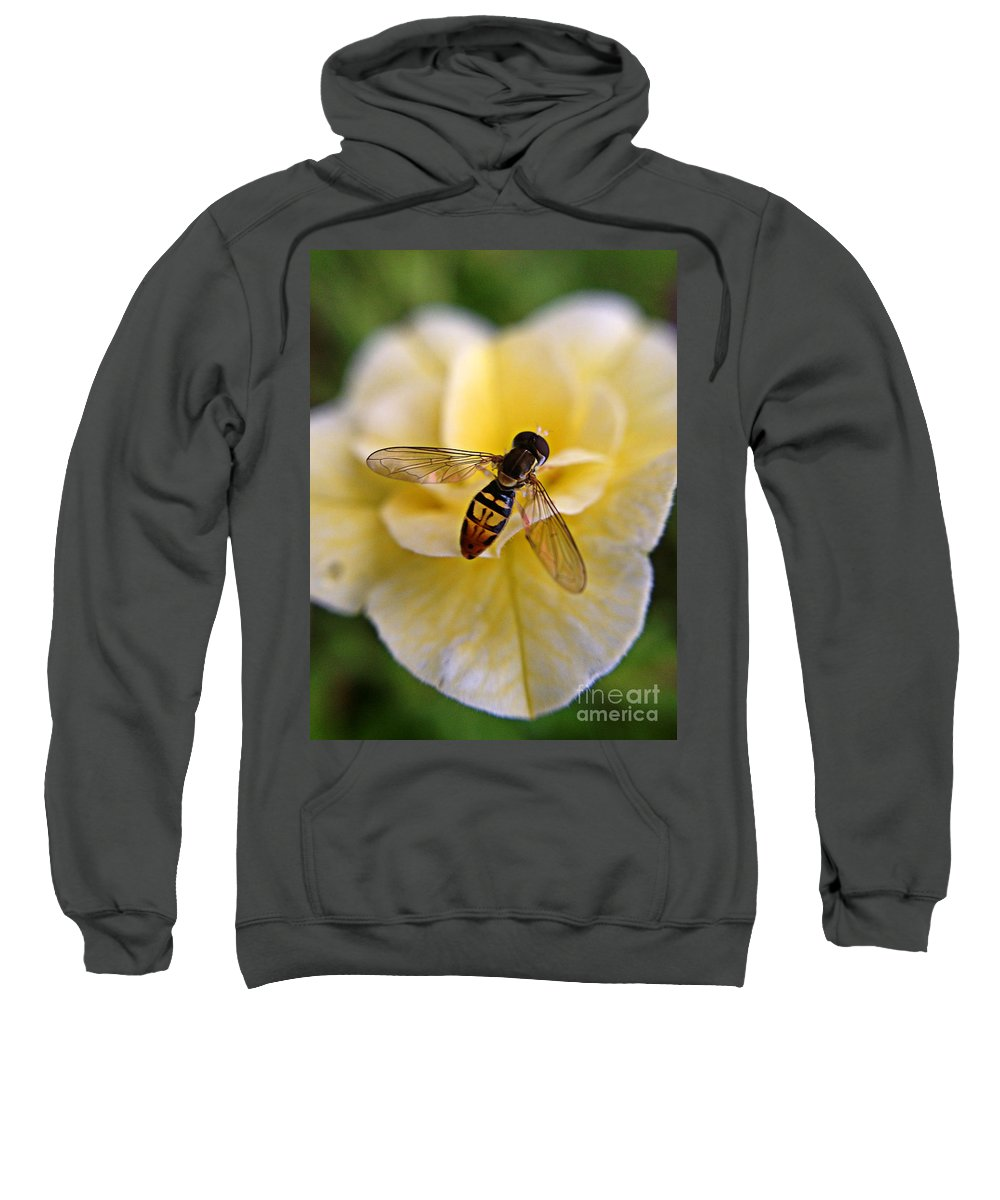 Bee Sweatshirt featuring the photograph Bee On Yellow Flower by Matt Zerbe