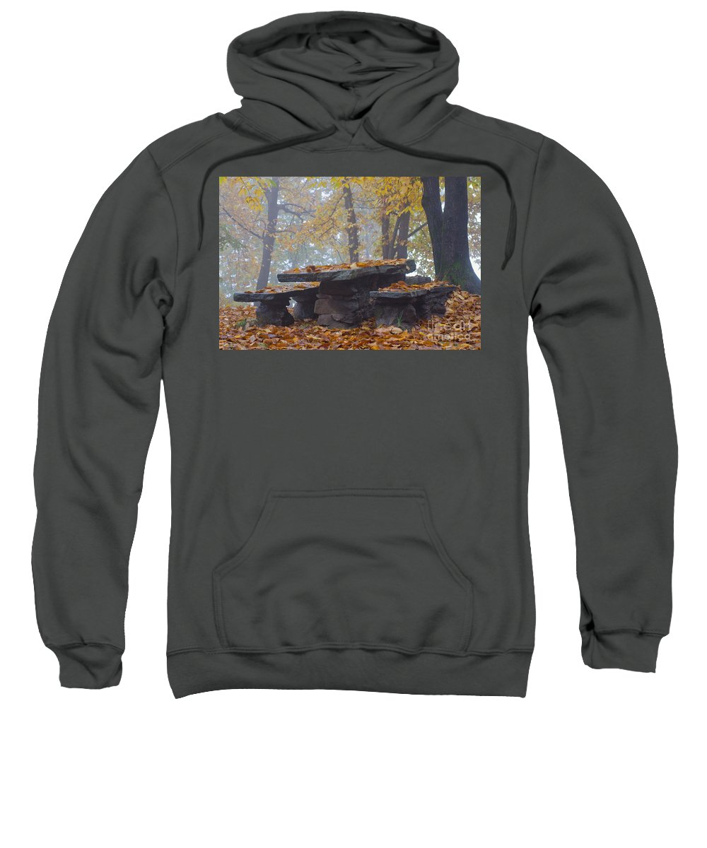 Bench Sweatshirt featuring the photograph Benches And Table In Autumn by Mats Silvan