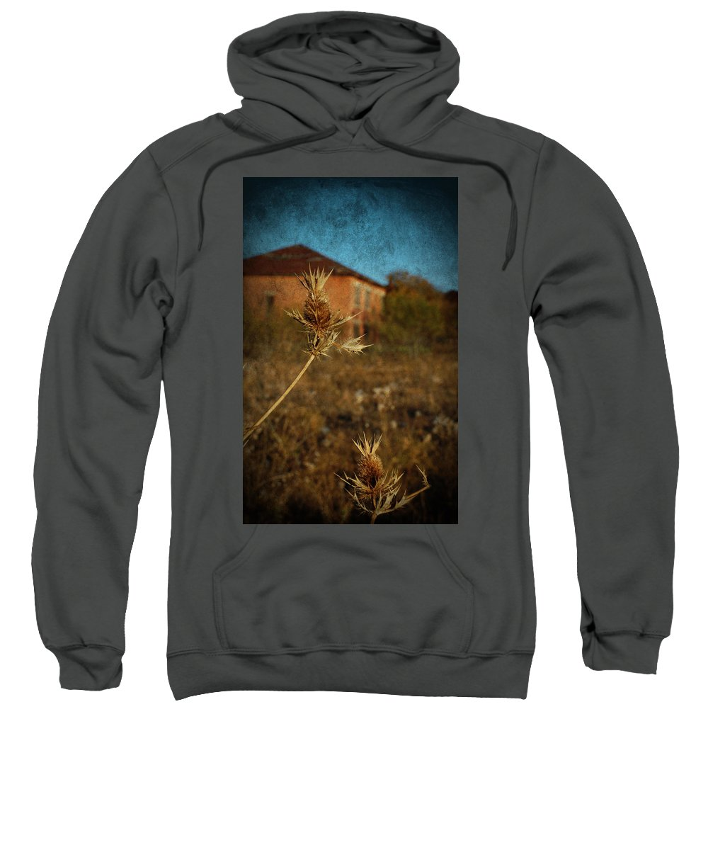 Urban Exploration Sweatshirt featuring the photograph Beyond The Thorns by April Davis