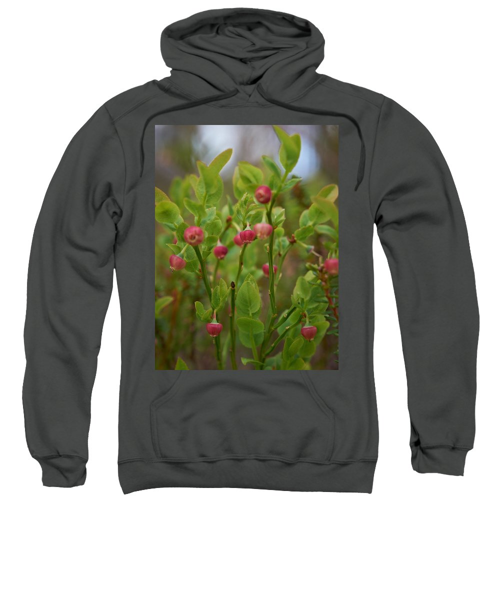 2012 Sweatshirt featuring the photograph Bilberry Flowers by Jouko Lehto