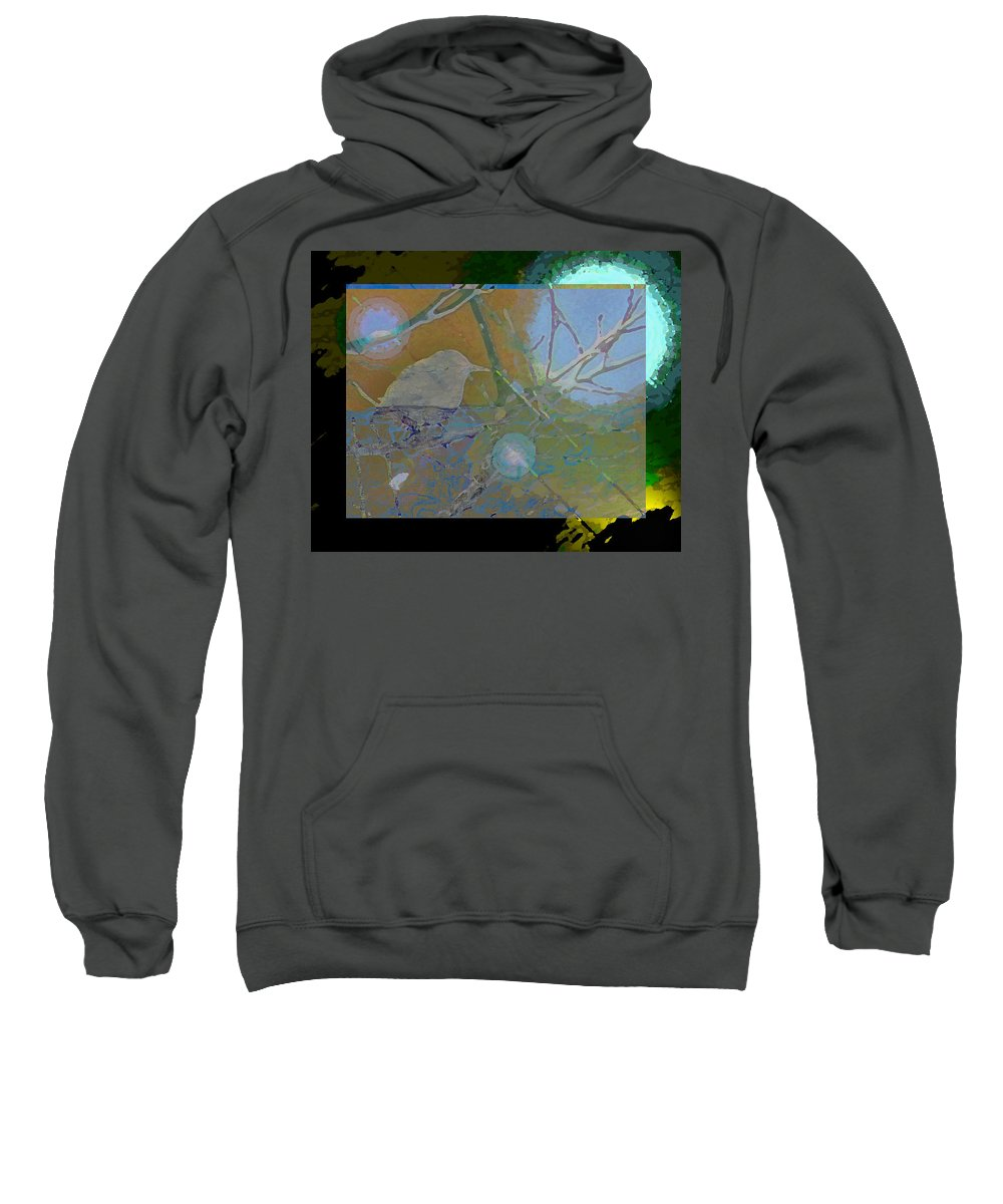 Abstract Sweatshirt featuring the photograph Bird Floating In Moonlight by Lenore Senior