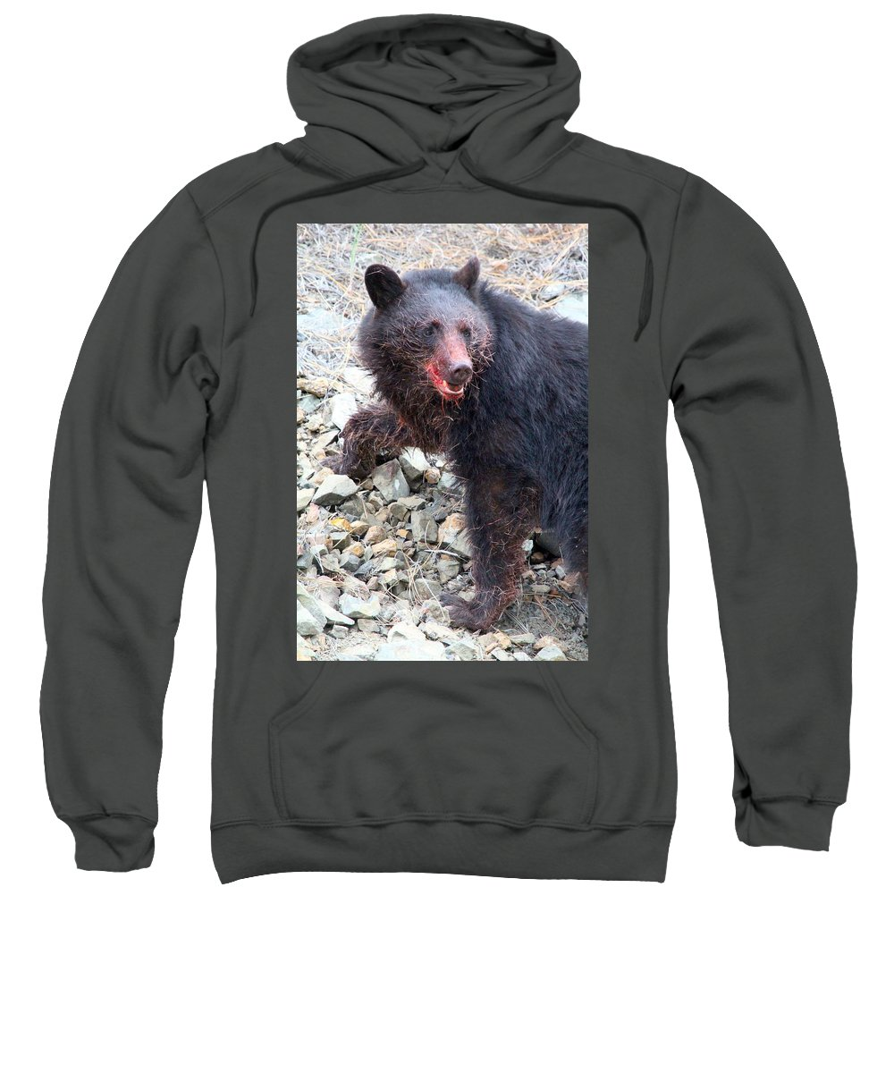 Black Bear Sweatshirt featuring the photograph Black Bear Bloodied Lunch by Ian Mcadie