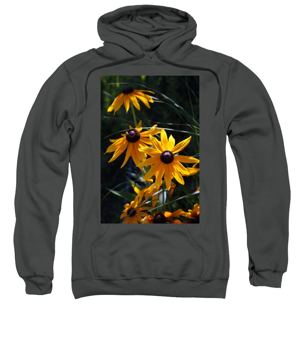 Nature Sweatshirt featuring the photograph Black Eyed Susan by Kay Novy