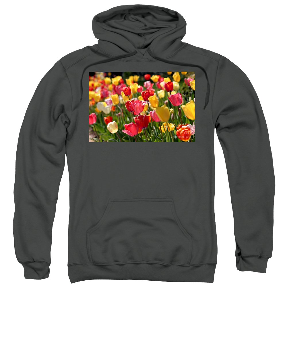 Flowers Sweatshirt featuring the photograph Blowing In The Wind by Living Color Photography Lorraine Lynch