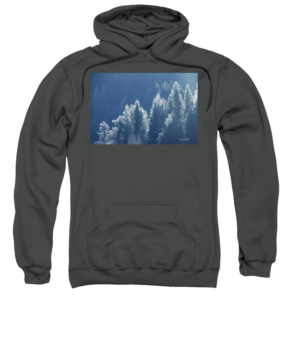 Winter Sweatshirt featuring the photograph Blue Christmas by Donna Blackhall