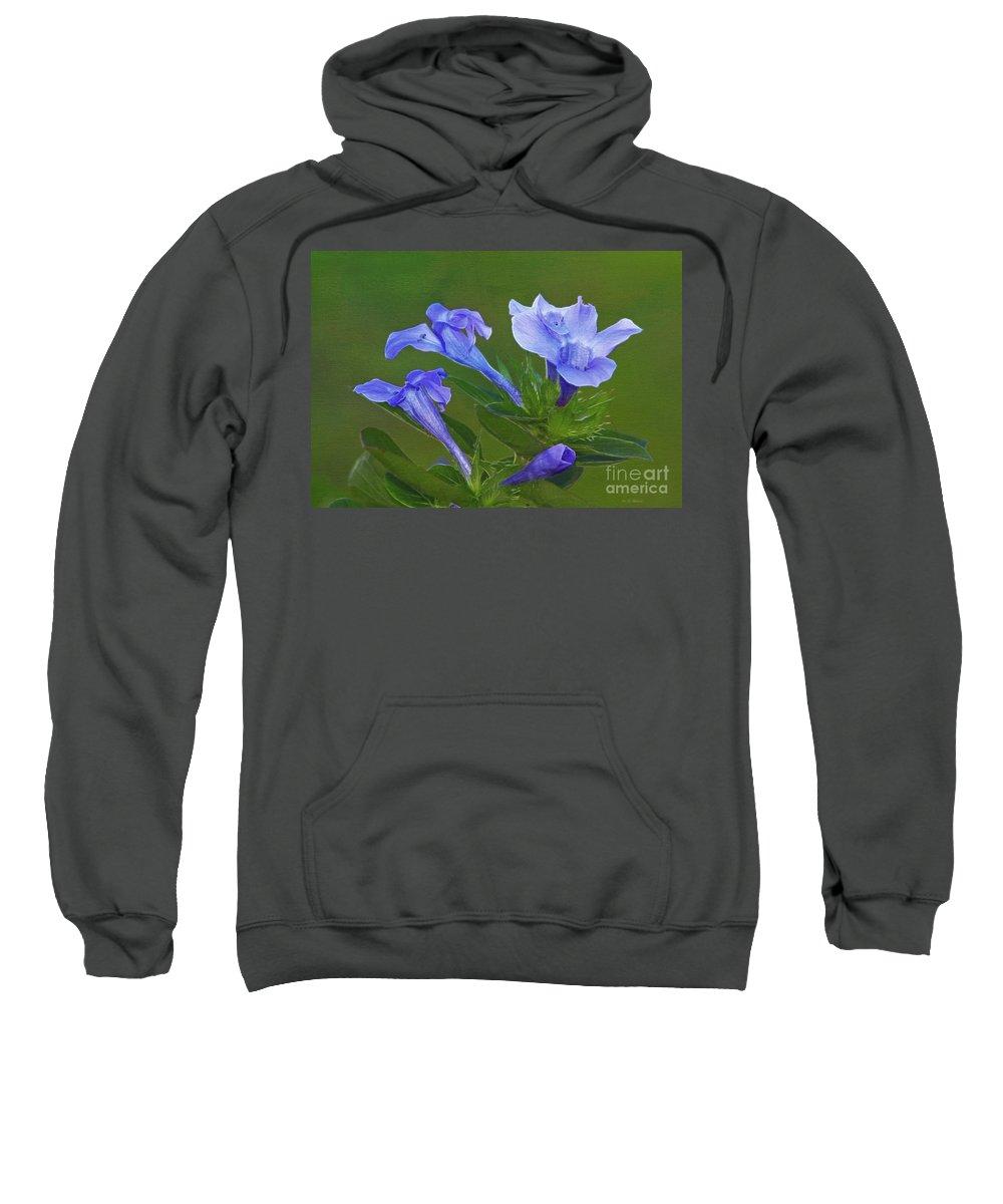 Flowers Sweatshirt featuring the photograph Blue On Green by Deborah Benoit